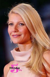 A Gwyneth Paltrow é a rainha dos penteados simples. Esse penteado é muito legal e basta escovar o cabelo para dar esse efeito.